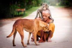 Mercifulness in Buddhism. Buddhist monk have compassion for Dog and Monkey.Mercifulness in Buddhism stock image
