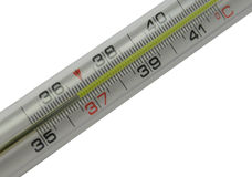 Mercurial thermometer scale (36,6) isolated on a w Royalty Free Stock Photo
