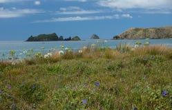 Mercury Islands from Opito Bay in Coromandel, New Zealand Stock Photos