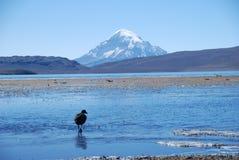Meren en bergen in Chili Stock Foto