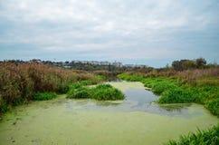 Meren en rivier Stock Fotografie
