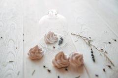 merengue Imagenes de archivo