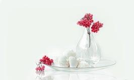Merengue com um ramo do viburnum do vaso na vida transparente de vidro ainda foto de stock royalty free