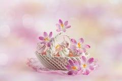 merengue em um prato com açafrões de florescência Imagens de Stock Royalty Free