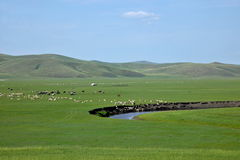 Mergel Riverside Golden Horde Khan Mongolian steppe tribes Royalty Free Stock Images