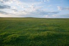 Mergel Riverside Golden Horde Khan Mongolian steppe tribes Royalty Free Stock Images