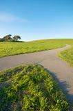 Mergen des Pfades auf grüner Landschaft und blauem Himmel Stockfotografie