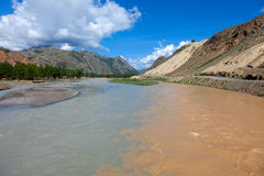 The merger of two mountain rivers. In Altai Stock Photography
