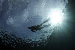 Mergulhador 3 fotos de stock royalty free