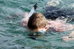 Mergulhador Fotos de Stock Royalty Free
