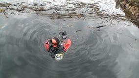 Mergulhador com a câmera na água Alaska vídeos de arquivo