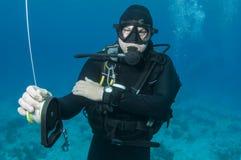Mergulhador de mergulhador fotos de stock