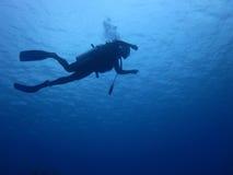 Mergulhador de MERGULHADOR Imagem de Stock