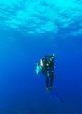 Mergulhador de mergulhador com speargun e os peixes inoperantes imagem de stock