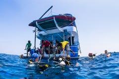 Mergulhador de mergulhador na superfície do oceano Imagem de Stock