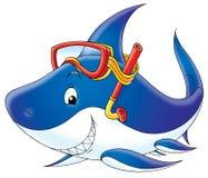 Mergulhador do tubarão Imagem de Stock