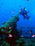 Mergulhador e canhão Fotografia de Stock