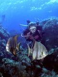 Mergulhador e peixe-espadas da mulher