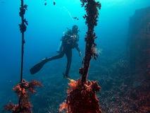Mergulhador em uma destruição ilustração royalty free