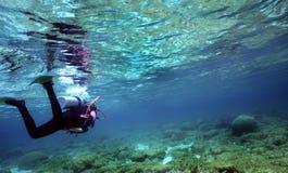 Mergulhador na água pouco profunda Imagem de Stock