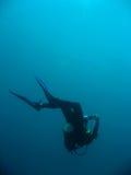 Mergulhador que desce Fotografia de Stock