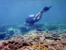 Mergulhador sob a água fotos de stock