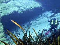 Mergulhador técnico da caverna - caverna azul da mola fotografia de stock royalty free