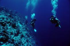 Mergulhadores Foto de Stock