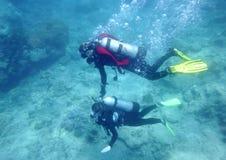 mergulhadores imagem de stock royalty free