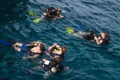 Mergulhadores de mergulhador em Ko Tao Fotos de Stock Royalty Free