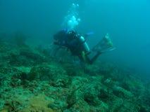 Mergulhadores do mergulhador Imagens de Stock Royalty Free