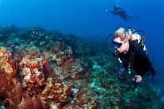 Mergulhadores que apreciam o recife em St Lucia Fotografia de Stock Royalty Free