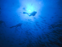 Mergulhadores no azul profundo Fotografia de Stock