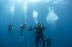 Mergulhadores no safetystop na bóia, Croatia Imagens de Stock Royalty Free