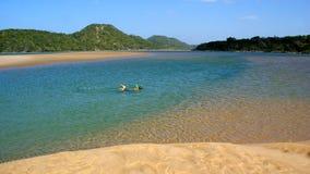 Mergulhando o menino na reserva natural da baía de Kosi, África do Sul fotos de stock royalty free