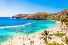 Mergulhando o paraíso tropical Hanauma lata em Oahu, Havaí Fotografia de Stock Royalty Free
