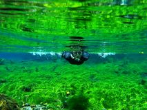 Mergulhar em uma mola de um rio foto de stock