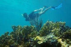 Mergulhar subaquático do homem em um recife de corais Foto de Stock Royalty Free
