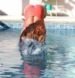 Mergulhe no verão Fotografia de Stock