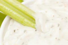 Mergulho Crunchy orgânico do aipo e do rancho Fotos de Stock