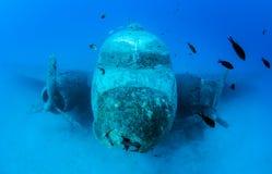 Mergulho da destruição do avião Imagens de Stock