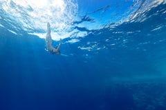 Mergulho da menina sob o mar Imagem de Stock