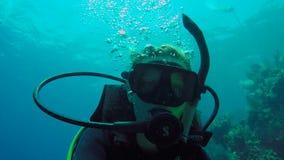 Mergulho da mulher no selfie do close up de Utila filme