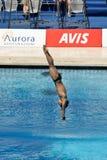 mergulho da plataforma 10m no campeonato do mundo de FINA fotografia de stock