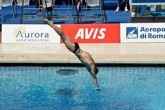 mergulho da plataforma 10m no campeonato do mundo de FINA Foto de Stock Royalty Free