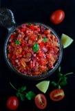 Mergulho da salsa Imagem de Stock Royalty Free