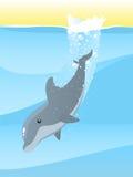 Mergulho do golfinho Fotos de Stock Royalty Free