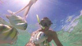 Mergulho do homem no recife de corais Escola dos peixes Cena subaquática do selfie video estoque