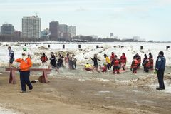 Mergulho polar 2014 de Chicago Imagem de Stock Royalty Free