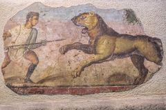 Hunter with lioness painting Royalty Free Stock Photos